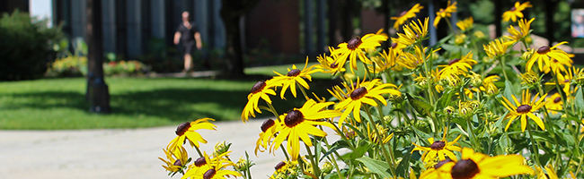 Flowers out front of the Mason Library