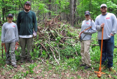 Left to right: Environmental Studies students Tara Pratt, Daniel Broderick, Marisa Morrison, and Matt Cecchetelli beside the pile of invasive plants that they have removed near a trail on Harris Center land.