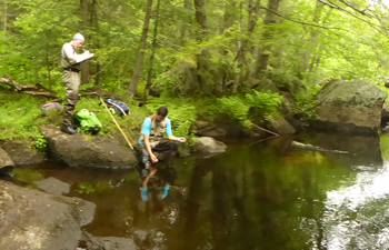 Environmental Studies student researchers collecting data streamside.