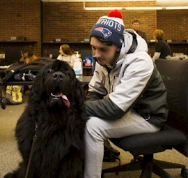 Keene State Journalism Students Assist Humane Society with Marketing Campaign