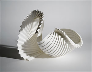 """Partial Shell"" by Richard Sweeney"