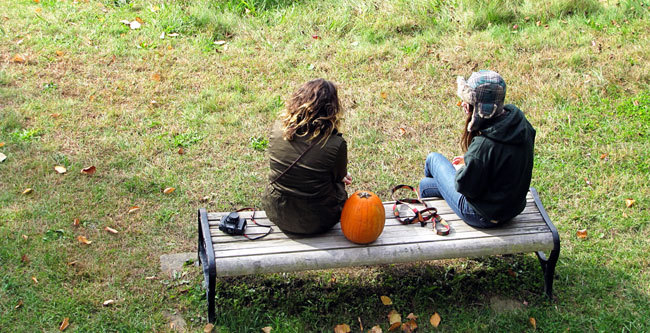 Pumpkin on a bench