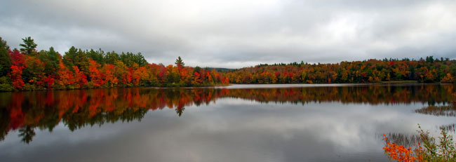 Goose Pond Fall