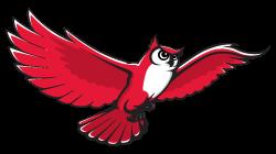 Academic Owl*