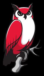 Repose Owl*