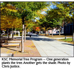 KSC Memorial Tree Program. One generation plants the tree. Another gets the shade. Photo by Chris Justice.