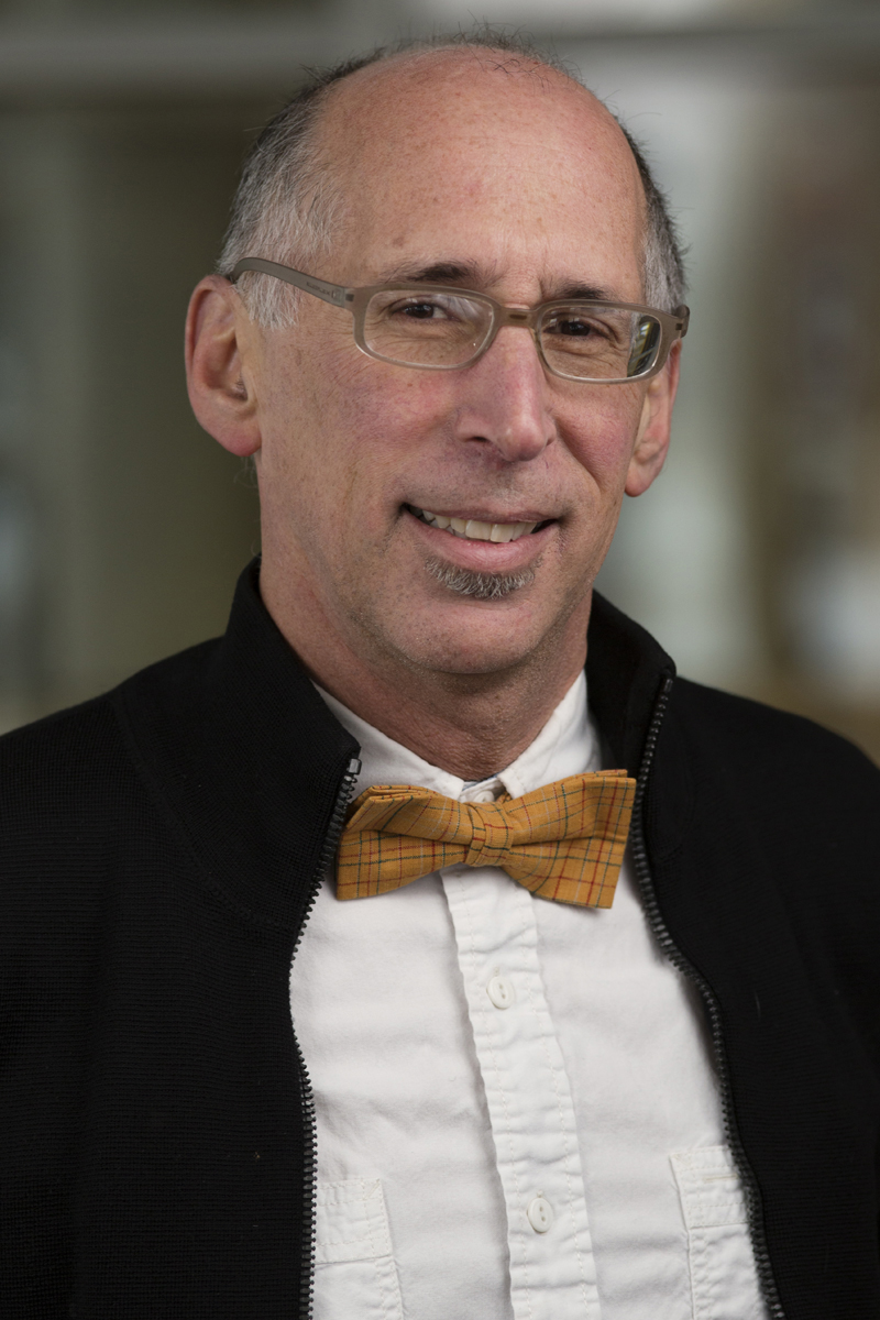 Photo of Dr. Lawrence  Welkowitz