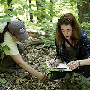 An environmental studies student working with...