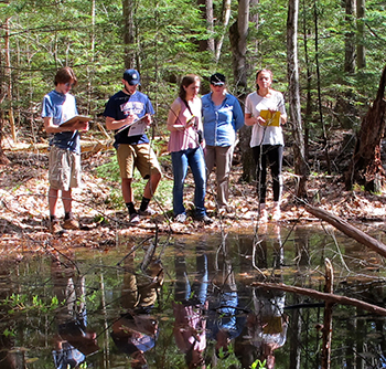 The team, with Karen Seaver, conducting research at a vernal pool. (Photo by Brett Amy Thelen)