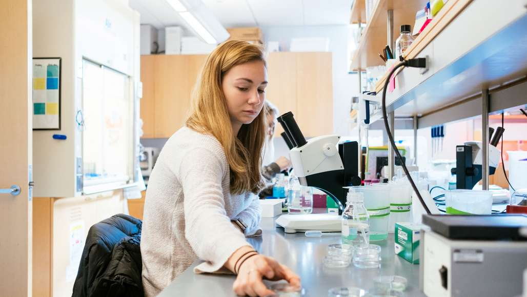 Undergraduate Biology Students Conduct Research Through NIH and NSF Grants