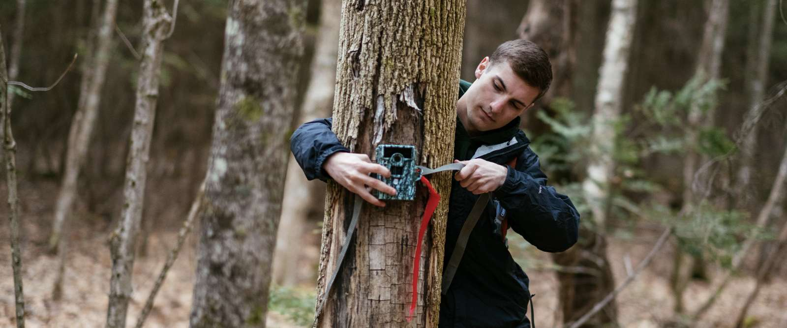 Outdoors, affixing device to tree