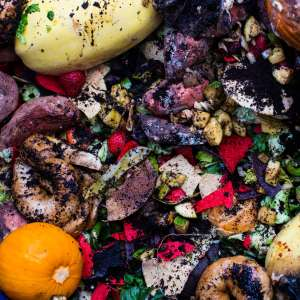 Food waste from the kitchen at Zorn Dining Commons