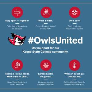 Owls United image